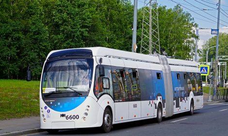 Trolleybus model 43303
